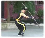 Details about  /Chinese Martial Arts Weapon Wing Chun Whistle Stick Shaolin Stick Flail Whip